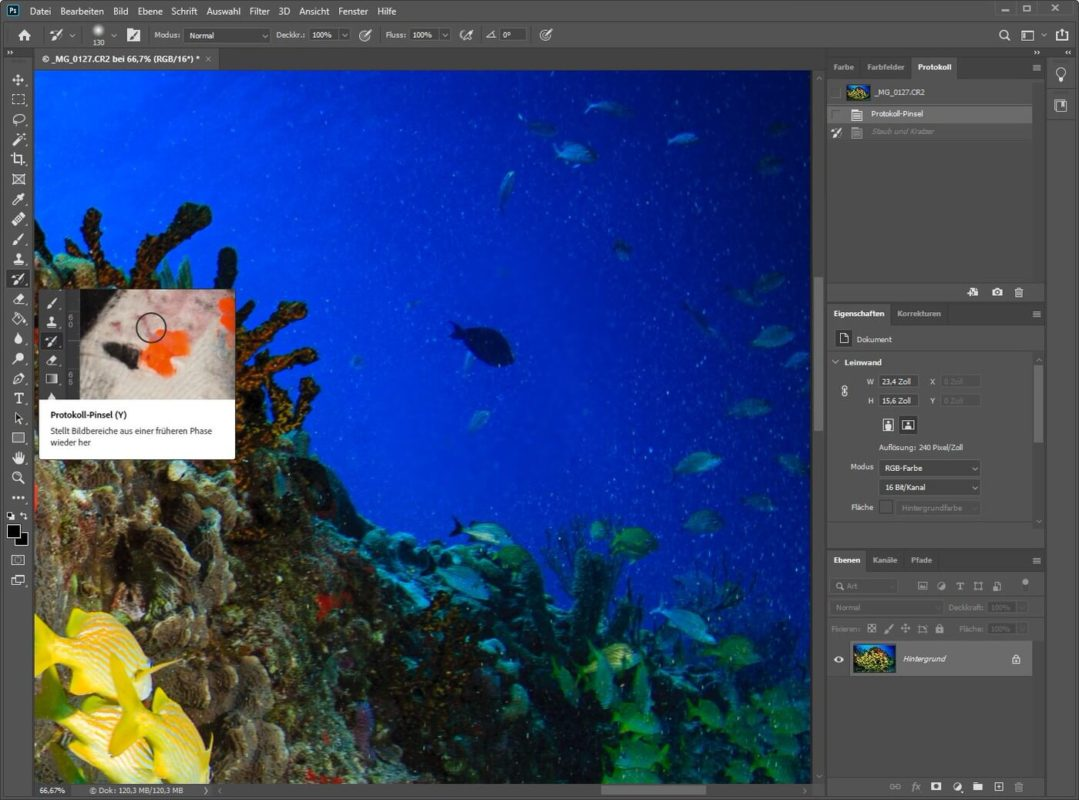 Photoshop Protokoll Pinsel